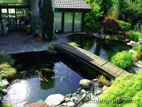 cầu trang trí sân vườn2