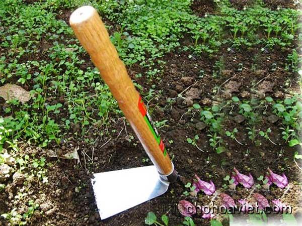 Cuốc làm vườn, dụng cụ vườn hữu ích – Hàng chất lượng cao