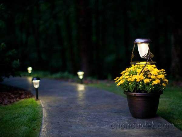 Đèn sân vườn3