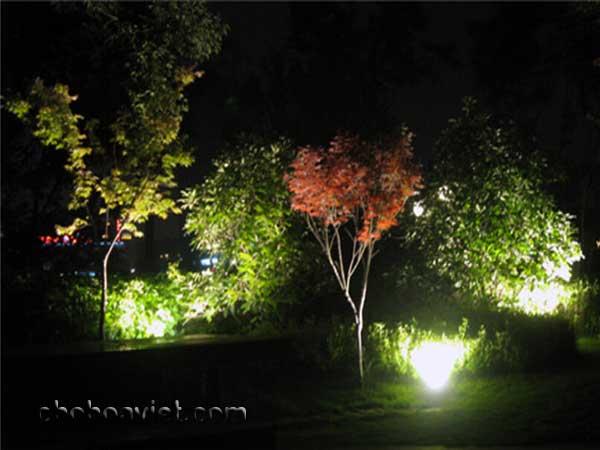 Đèn sân vườn 6
