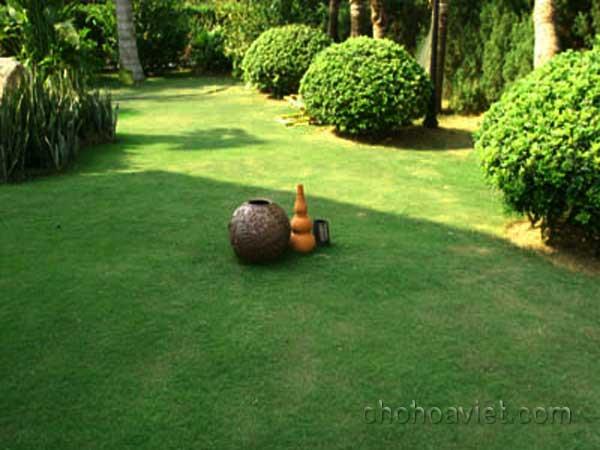 Gốm sứ trang trí sân vườn2
