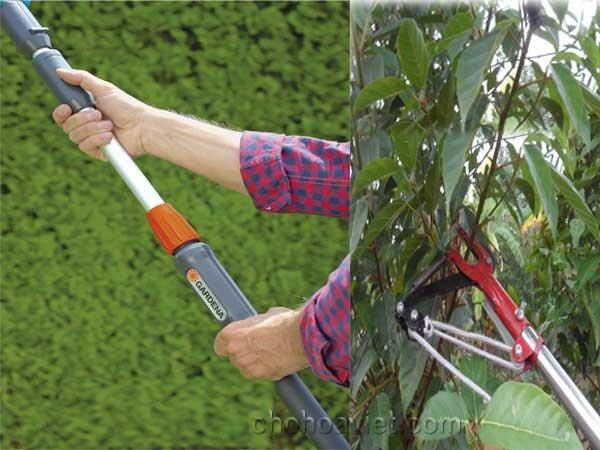 Kéo cắt cành cây trên cao2